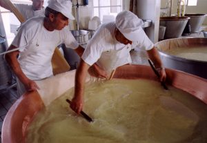 Levata di Parmigiano-Reggiano