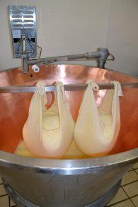 Cagliata di Parmigiano-Reggiano Vacche Rosse