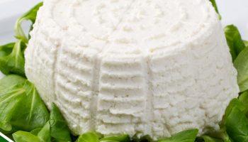 Ricotta prodotta con latte di Vacche Rosse di Razza Reggiana