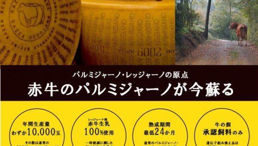 Giappone: manifesti per Eataly Tokyo